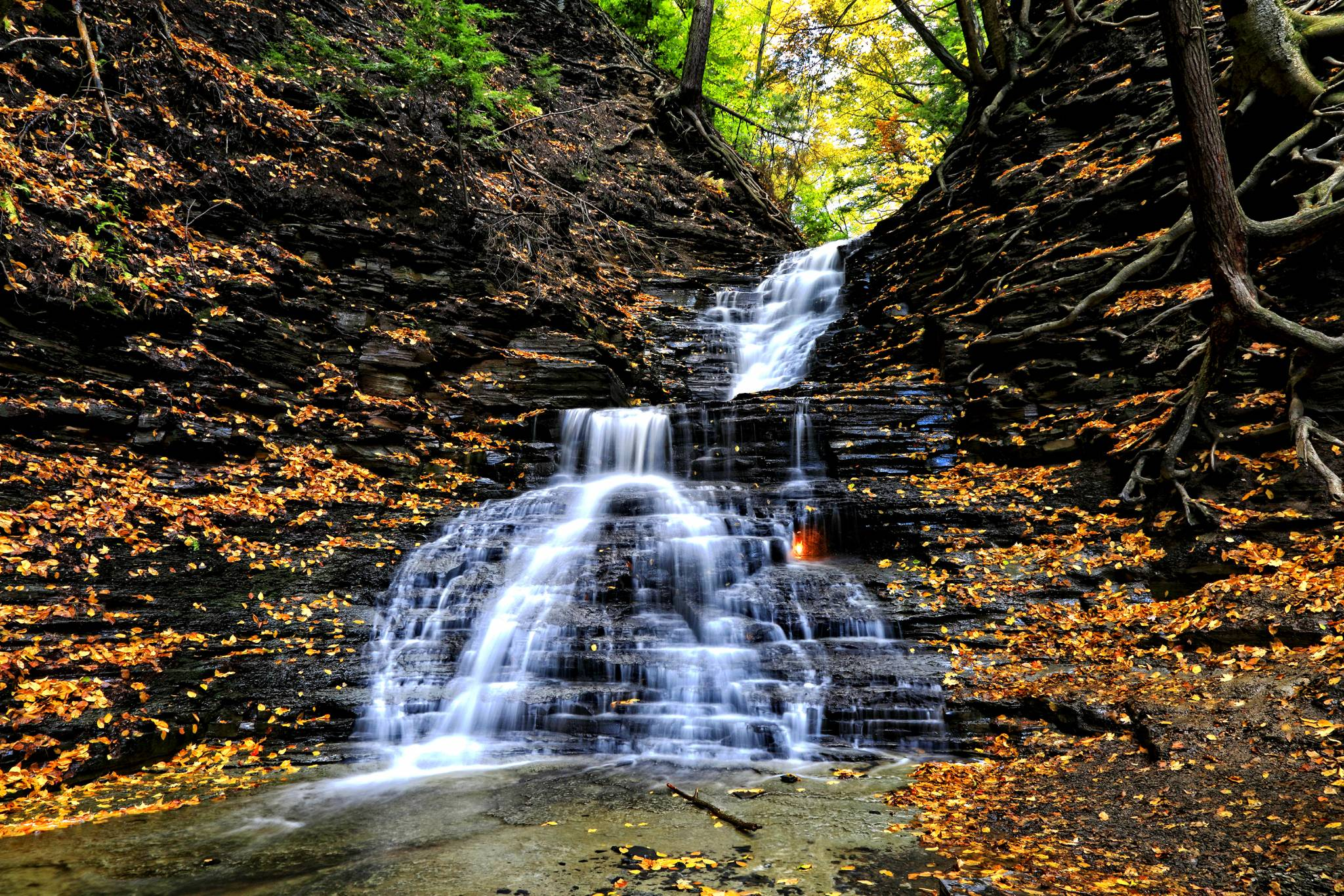 Eternal Flame...Chestnut Ridge Park, WNY Waterfalls