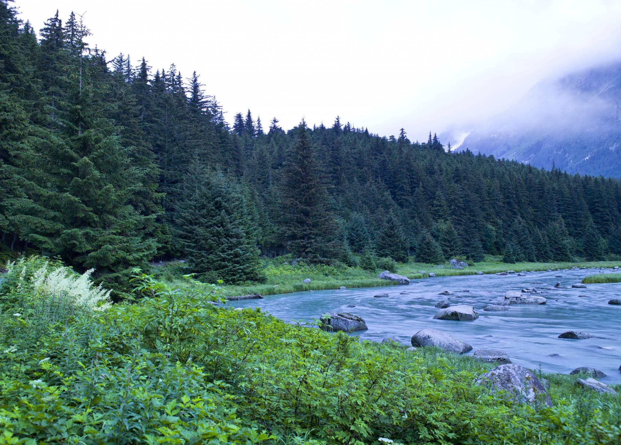 haines alaska landscape photography > yukon territories > portfolio ... Haines