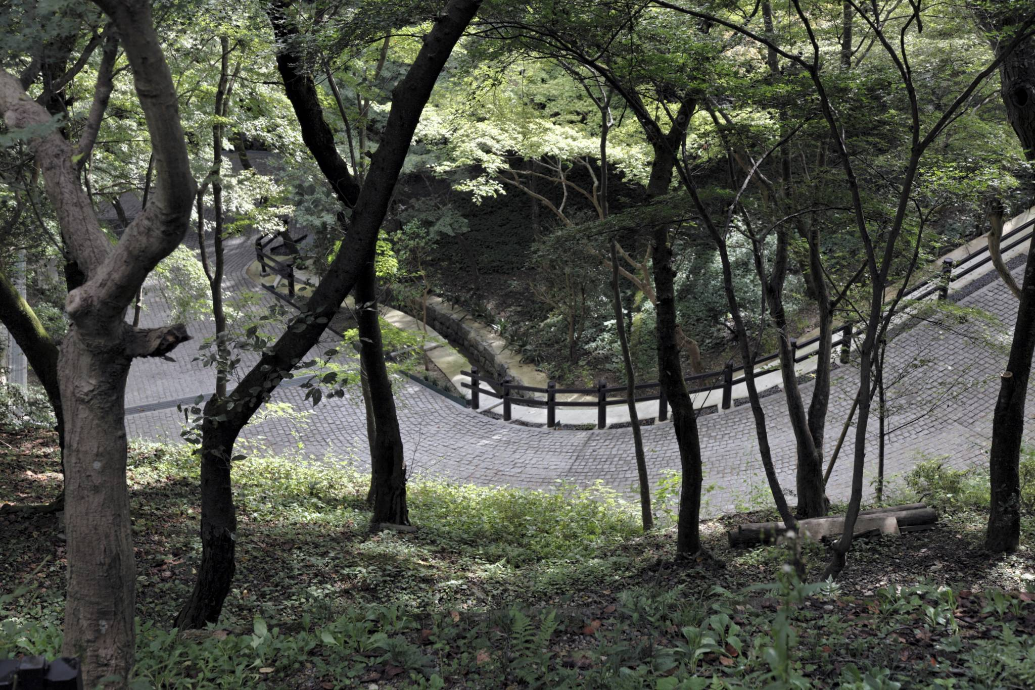travel photo winding temple road kyoto japan